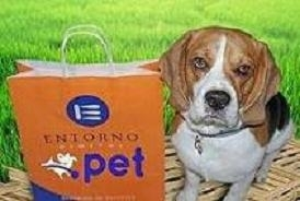 .PET DOMAIN, CREATED FOR YOUR PETS